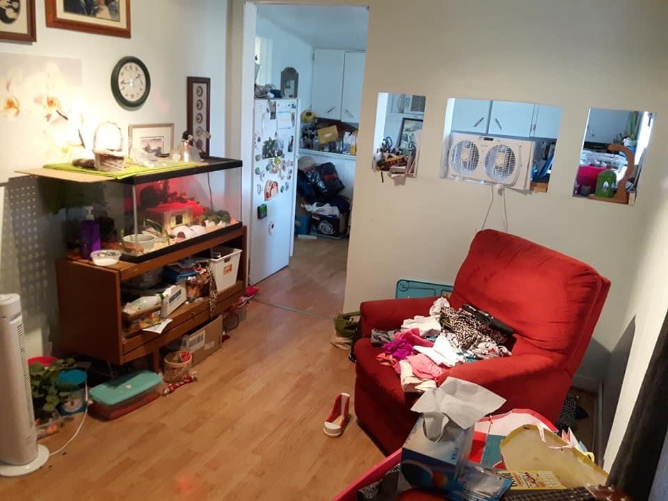 hoarding cleaning; a chair is unusable as clutter runs amok; items all over a cluttered house
