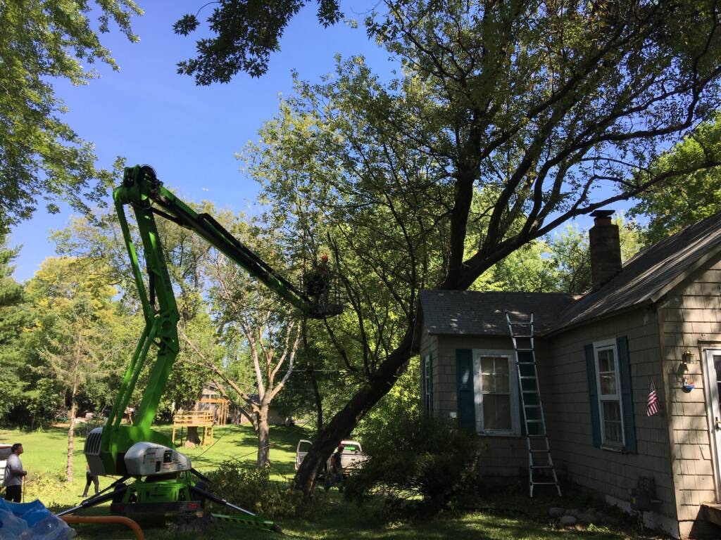 A large tree is removed from the roof of a home where it fell in a summer storm